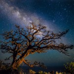 Drew Sulock | Illuminated