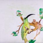 Isabella Pandolfi |Flying Wonder