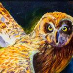 Jan Kasprzycki | In Golden Light, Pueo Flight